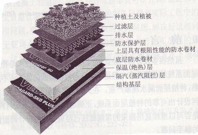 由于种植屋面系统的设计在国内需要建筑设计与园林设计2个专业相互